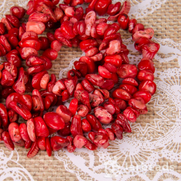 Каменная крошка Коралл красный отрезок 42см